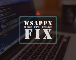 wsappx high cpu usage